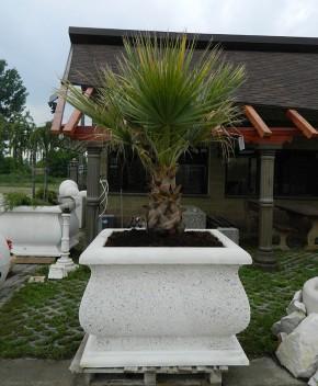 Jardiniera Sardinia - Ghivece din beton