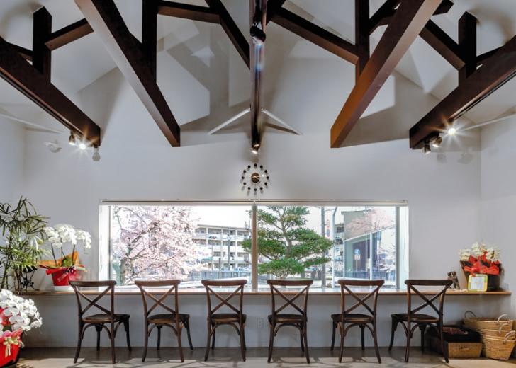 Cafeneaua Mirrors - Oglinzi folosite sa reflecte vegetatia exterioara