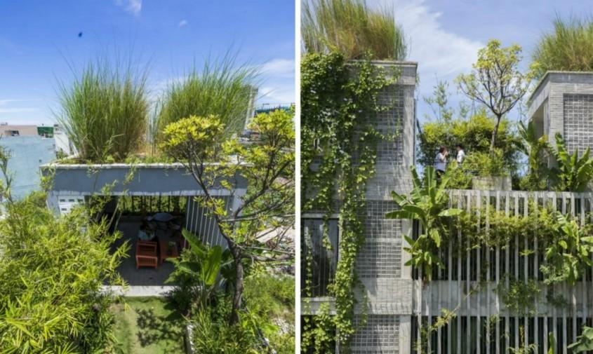 O clădire de birouri verde acoperită cu plante native - O clădire de birouri verde acoperită