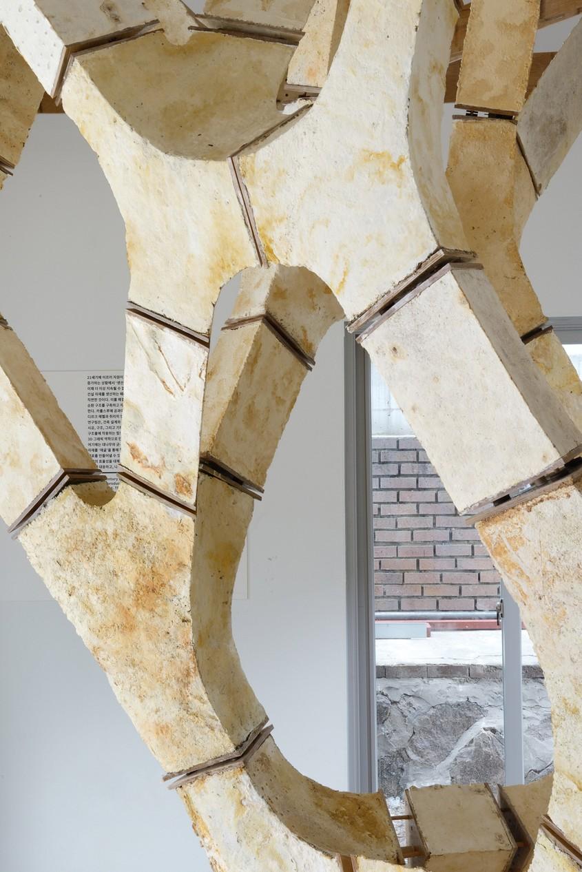 Structura care demonstreaza utilitatea ciupercilor in constructii - Structura care demonstrează utilitatea ciupercilor în construcții