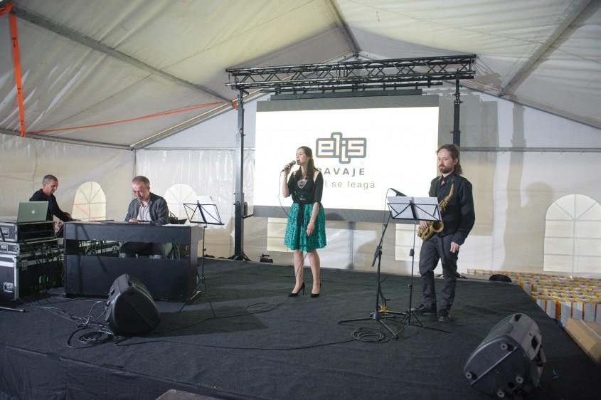 Lansarea celui mai mare showroom de pavele la împlinirea a 10 ani Elis Pavaje Stoenești -