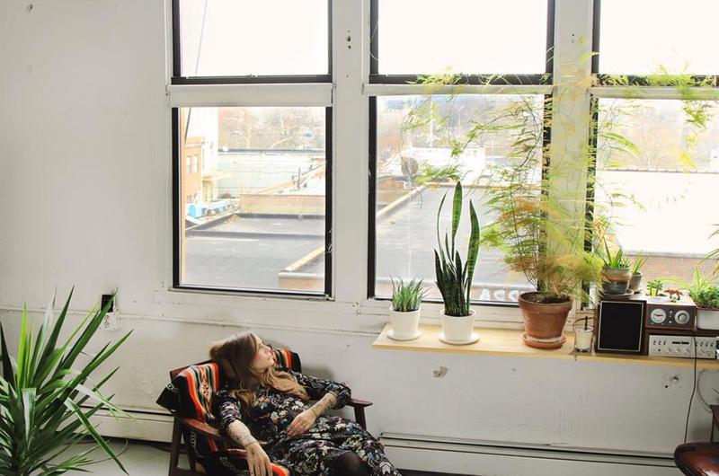 6 greseli pe care oricine tine plante in apartament le poate face - 6 greșeli pe
