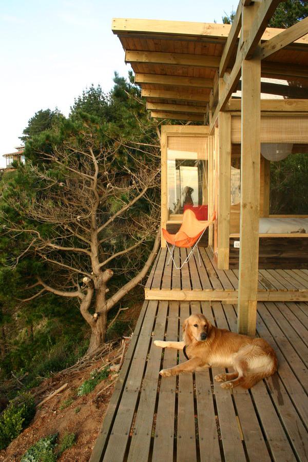 Vedere de pe terasa catre dormitor si baie - Frumusete la inaltime