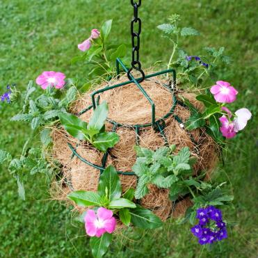 Fibre de cocos intr-un suport metalic imbraca pamantul de flori dand un efect estetic deosebit si