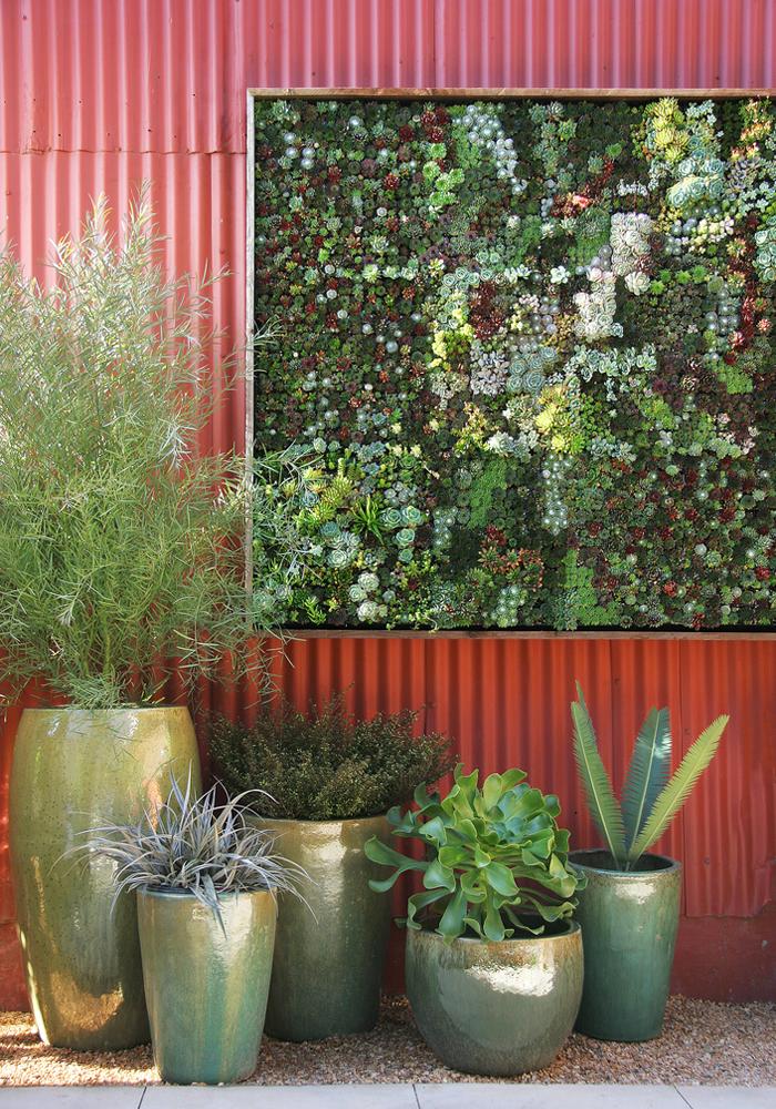 Un perete imbracat in plante (foto: Caitlin Atkinson, floragrubb.com) - Gradini verticale