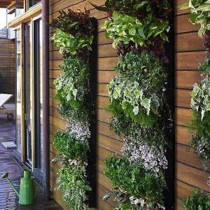 Un perete cu plante desfasurate pe verticala (sursa: RowdyKittens.com) - Idei decorative