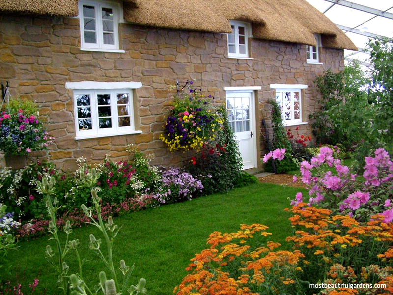 Grădina englezească - Grădina englezească