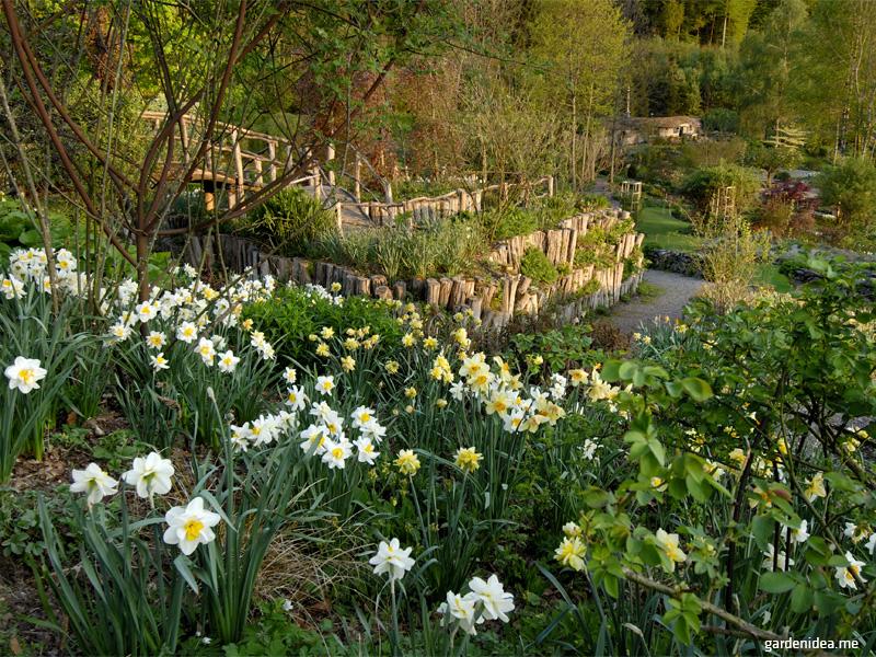 Grădina rustică - Grădina rustică