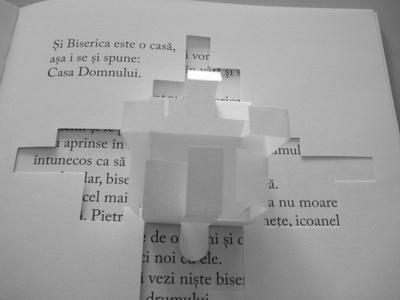Vise despre case - Imaginatie si creativitate din file plate un proiect 3D si din alb-negru