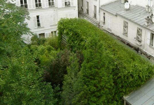"""Casa """"Lost in Paris"""" este complet invaluita in vegetatie - Casa """"Lost in Paris"""" este complet"""