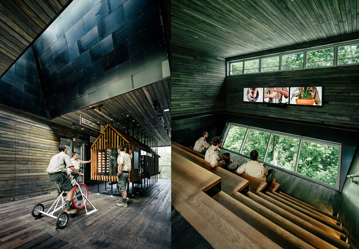 Casa din copac - Casa din copac - exterior