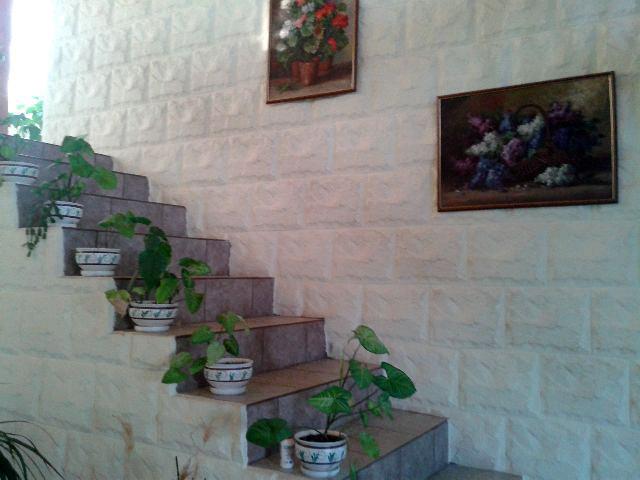Placare cu piatra perete interior - CONSTRUCTII MILLENIUM 5 - Placare cu piatra perete interior -