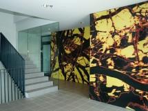 Placi HPL pentru placarea peretilor - Placi HPL pentru placarea peretilor