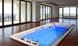 Spa pentru relaxare si inot AMAZON SWIMSPA INGROUND - Spa-uri pentru inot si relaxare