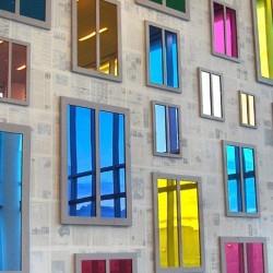 Folii decorative pentru geamuri (foto Leykom) - Folii decorative pentru geamuri (foto Leykom)