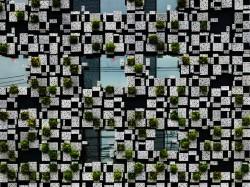 Casa Green Cast 2 - Casa Green Cast protejata de vegetatie