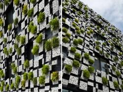 Casa Green Cast 3 - Casa Green Cast protejata de vegetatie