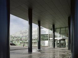SKC Bratislava8 - O casa intoarsa cu josul in sus, un mod ciudat de a decora sediul companiei