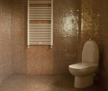 Aplicatii mozaic ceramic forme speciale - Aplicatii mozaic ceramic forme speciale