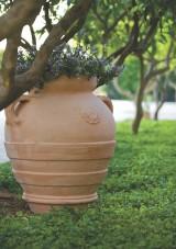 Ghiveci teracota - Ghivece pentru flori