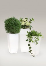 Ghiveci polietilena - Ghivece pentru flori