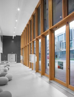 Pereti cortina lemn-aluminiu - Pereti cortina utilizare