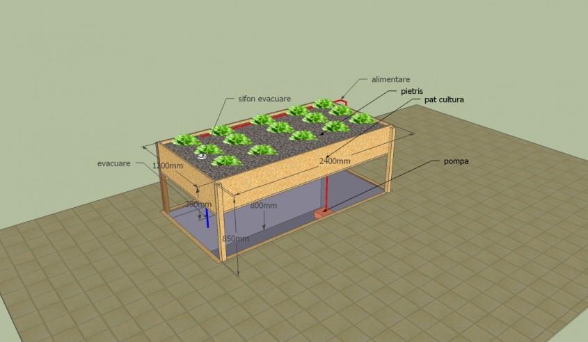 Doua bazine care functioneaza in simbioza unul pentru legume si plante altul pentru pesti de consum
