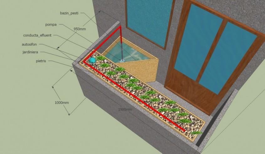 Un sistem acvaponic poate fi adaptat si la balcon asigurand autonomia de consum chiar si la