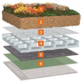 Acoperis cu vegetatie pretentioasa cu Bauder Wasserspeicherplatte WSP 50 - Acoperis cu vegetatie extensiva