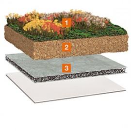 Acoperis verde avantajos cu Bauder SDF-Matte - Acoperis cu vegetatie extensiva