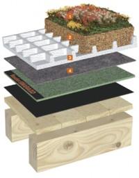 Vegetatii extensive pentru acoperisuri inclinate cu panta de 5° pana la 15° - Acoperis inclinat cu vegetatie