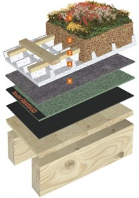 Vegetatii extensive pentru acoperisuri inclinate cu panta de 15° pana la 25° - Acoperis inclinat cu vegetatie