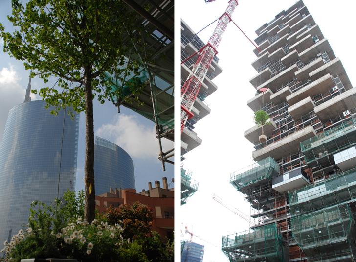 Bosco Verticale6 - Bosco Verticale din Milano, prima padure pe verticala