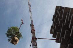 Bosco Verticale8 - Bosco Verticale din Milano, prima padure pe verticala