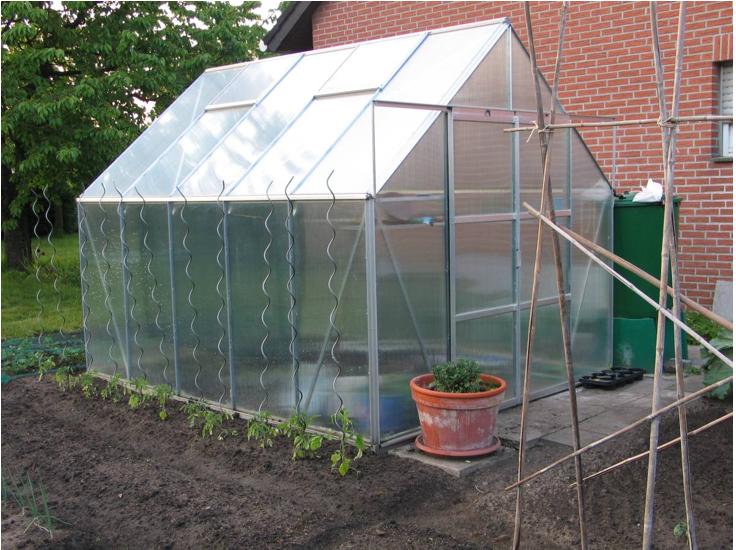 Un sol nisipos bine drenat este cel mai potrivit pentru multe legume si plante - Terenul