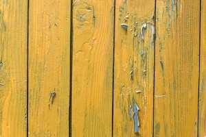 Lemn cu vopseaua deteriorata - Uzura lemnului vopsit comparativ cu cel lacuit
