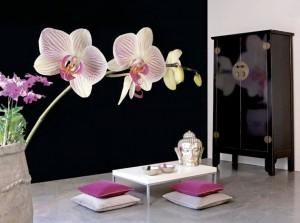 Fototapetul este realizat adesea la comanda, prin imprimarea unei singure imagini pe materialul si in dimensiunile dorite (foto: www.stylehive.com) - Tipuri de tapet