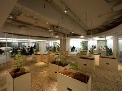 Pasona HQ5 - Cladirea de birouri Pasona HQ din Tokyo