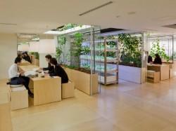 Pasona HQ6 - Cladirea de birouri Pasona HQ din Tokyo