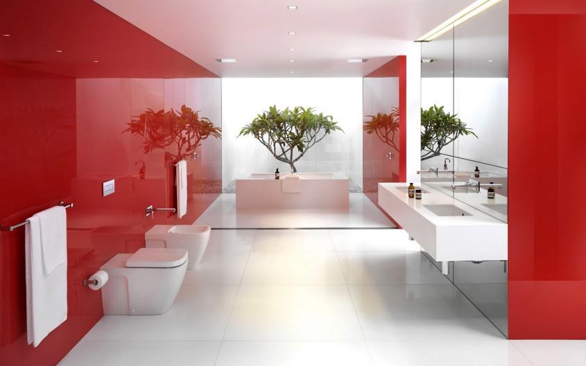 Foto via desentwallpaper.blogspot.com - Vitalitate si eleganta greu de egalat