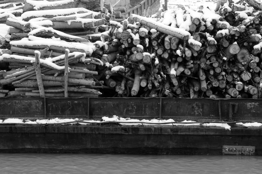 Slep cu cherestea pe Dunare (foto Alina Miron) - Resursele pentru incalzire ne-ar fi incalzit mai