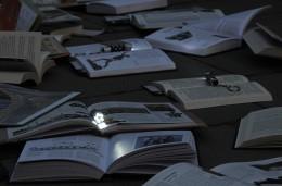 5495 - Evenimentul creat de ziarul Ring cu Editura Litera, in imagini. Multimea adunata spune totul