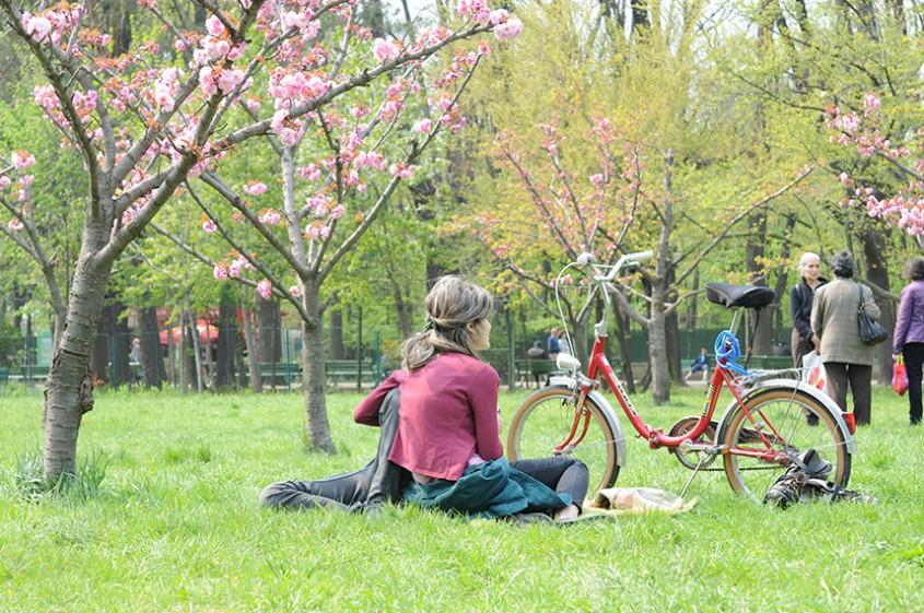 Foto Alina Miron - Statul pe iarba rolele si biciclete erau pana nu demult interzise in