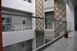 Balustrada birouri 30 Avenue, Bacau - Balustrade din sticla