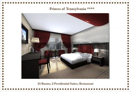 Hotel Printii Transilvaniei, Baia Mare - Lucrari realizate: