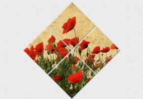 Tablouri set dual view flori - maci rosii  - Tablouri set