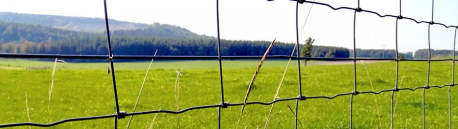 Plasa innodata pentru imprejmuiri autostrazi, terenuri de vanatoare Prairie Heavy - Plasa electrosudata