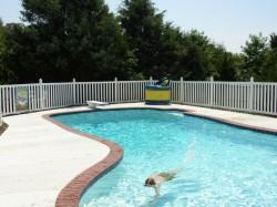 Gard pentru piscina - Garduri din PVC