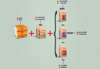 Sistemul de zidarie cu rosturi subtiri - Sistemul de zidarie
