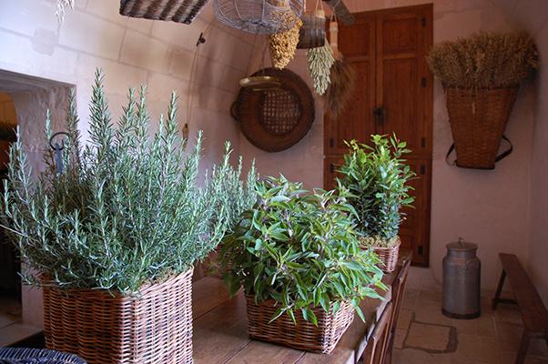 Bucataria castelului Chenonceau, Franta, foto Alina Miron - Bucatariile medievale foloseau resursele eficient